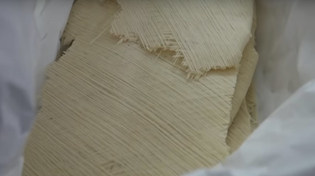 sheets of pasta