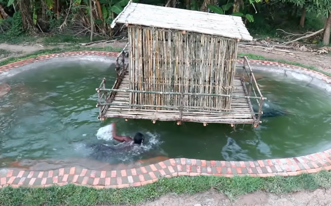 Hand Digging A Swimming Pool Around A Bamboo House